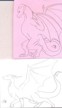 Dragon Line sketches by CamKitty2