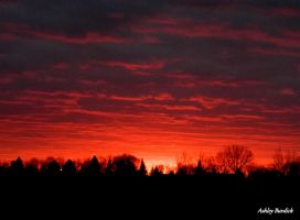 Sunset 3 by crownvic4life