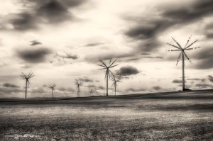 Electric Wind #06 by artofphotograhy
