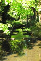 Shaded Stream by RMEdwards
