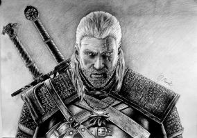 The Witcher by marcinyak