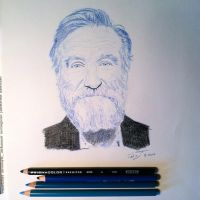 Robin Williams Tribute by TripleS-Art