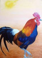 Rooster by laurapliskin