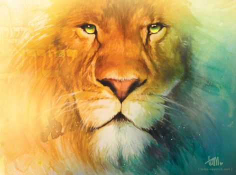 Lion of Judah by tpatrick