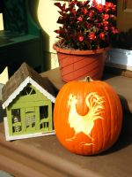 Rooster Pumpkin Decoration by iluvobiwan91