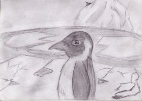 Pinguin by Soulkim