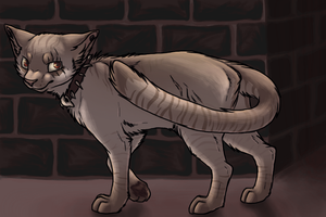 Alley Cat by SpitfiresOnIce