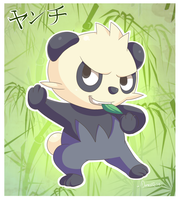 Pancham the fighting panda by Domestic-hedgehog