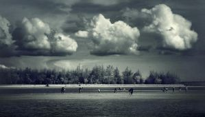 On The Beach II by apipro