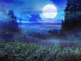 Harvest Moon by cylonka
