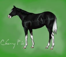Cherry Pie yearling by scaramouche2802