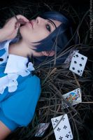 Ciel in Wonderland by Nami-Nami15