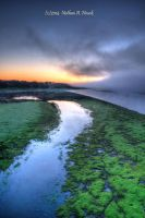 Des Moines River - Super Foggy 2 by abstractcamera