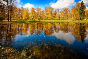 The colors of Fall... _90_ by my-shots