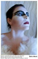 Black Swan FacePaint.10 by Della-Stock