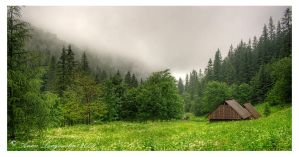Strazyska Valley by aniabeata