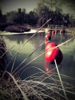 Buoys on Rock Creek by dvdhrns