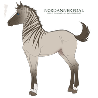 Piccolo Tiger roan foal edited-1 by ShapeShifter314