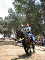 More Knight Joust Stock 002 by tursiart