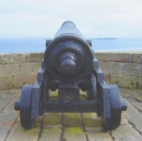 Cannon by ef-barber