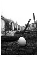 Survived Egg by Gustavs