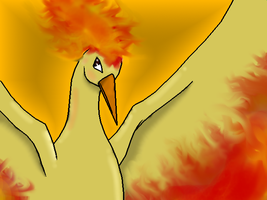 Moltres by ShadowofMoons