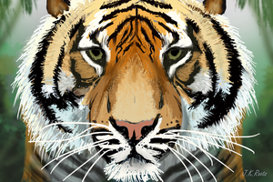 Tiger by JKRoots