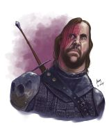 The Hound ~ Sandor Clegane from Game of Thrones by jadamfox