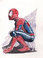 Spiderman by JoeyLeeCabral