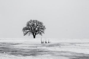 Solitude by geographynuts