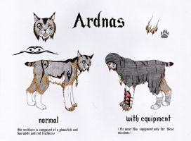 Ardnas-character sheet by WhiteWolfMoonlight