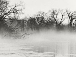 Foggy River by torifanning