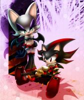 rouge the bat and shadow by ArchiveN