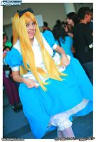 the bloomers of alice by bellatrix20