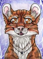 ACEO 310 Tigercat by Beast91