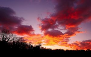 Lagan Sunset, February 2010 by Gerard1972