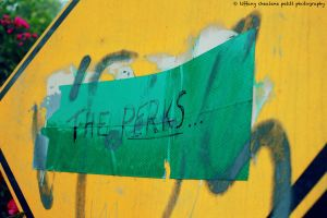 The Perks by As-3