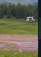 Blooming Meadow Preview by kuschelirmel-stock