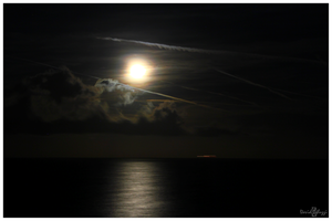 Moonlight Shadow by smaccks