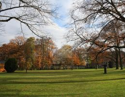 autumn  november park by rockscorp