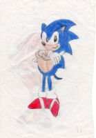 Sonic the Hedgehog by SuperSensei