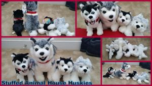 Stuffed Animal House Huskies! by Vesperwolfy87