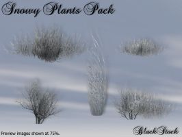 Snowy Plants Pack by BlackStock