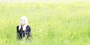 Buttercups by Tiger--photography