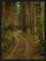 The Road Goes Ever On by jeremi12