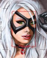 Black Cat Artist Proof2 by artguyNJ