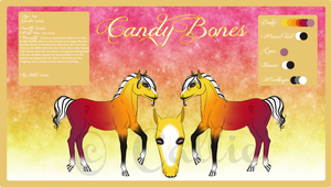 + Candy Bones - Reference Sheet + by Aisuruu