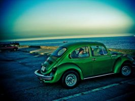 Green bug by the sea by darkani
