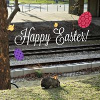 Happy Easter! by spiti84