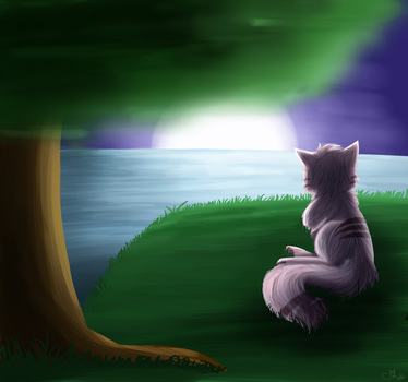 watching over the night by Jes-and-Flight